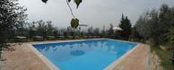 <strong>La natura della Toscana</strong> circonda la <strong>piscina nel verde di Casa Vacanze Gli Oleandri</strong>.